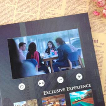 Brochure - VideoPliant